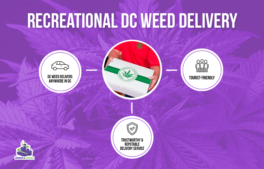 DC Weed Delivery Infographic