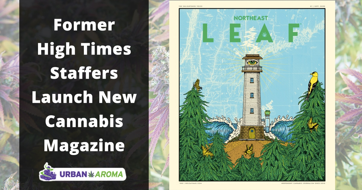 former high times staffers launch new cannabis magazine
