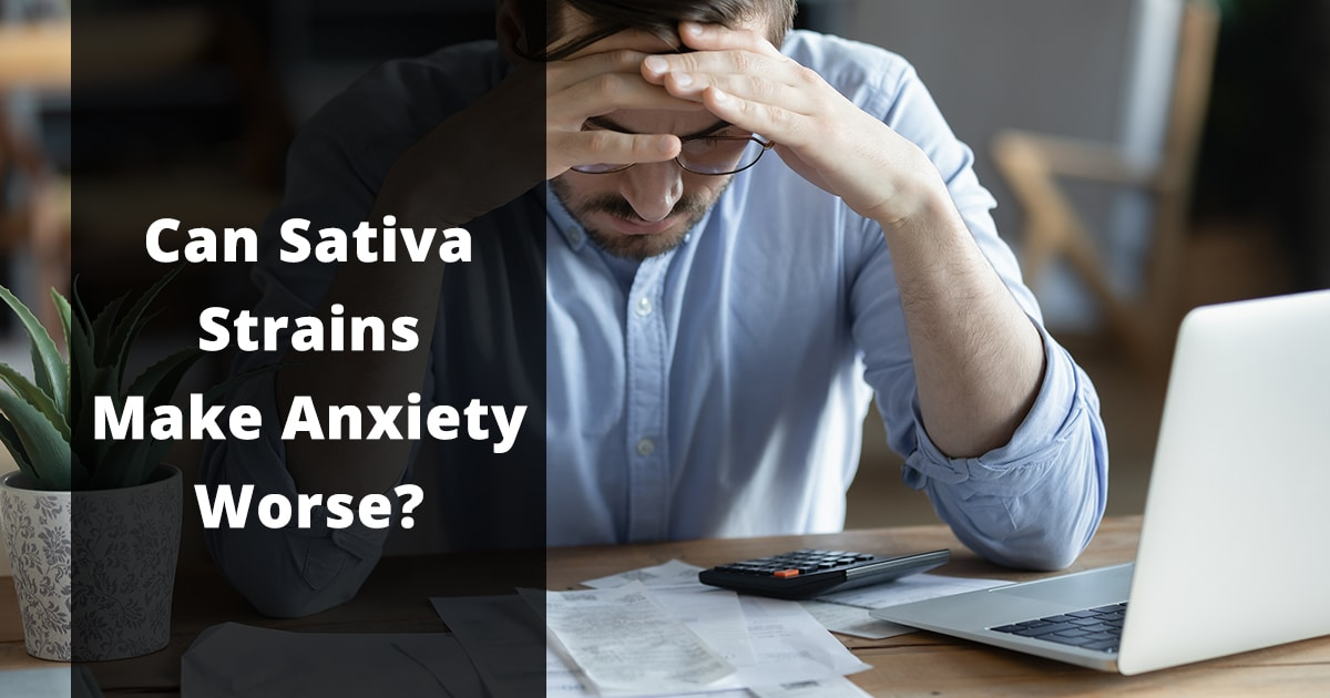 can sativa strains make anxiety worse