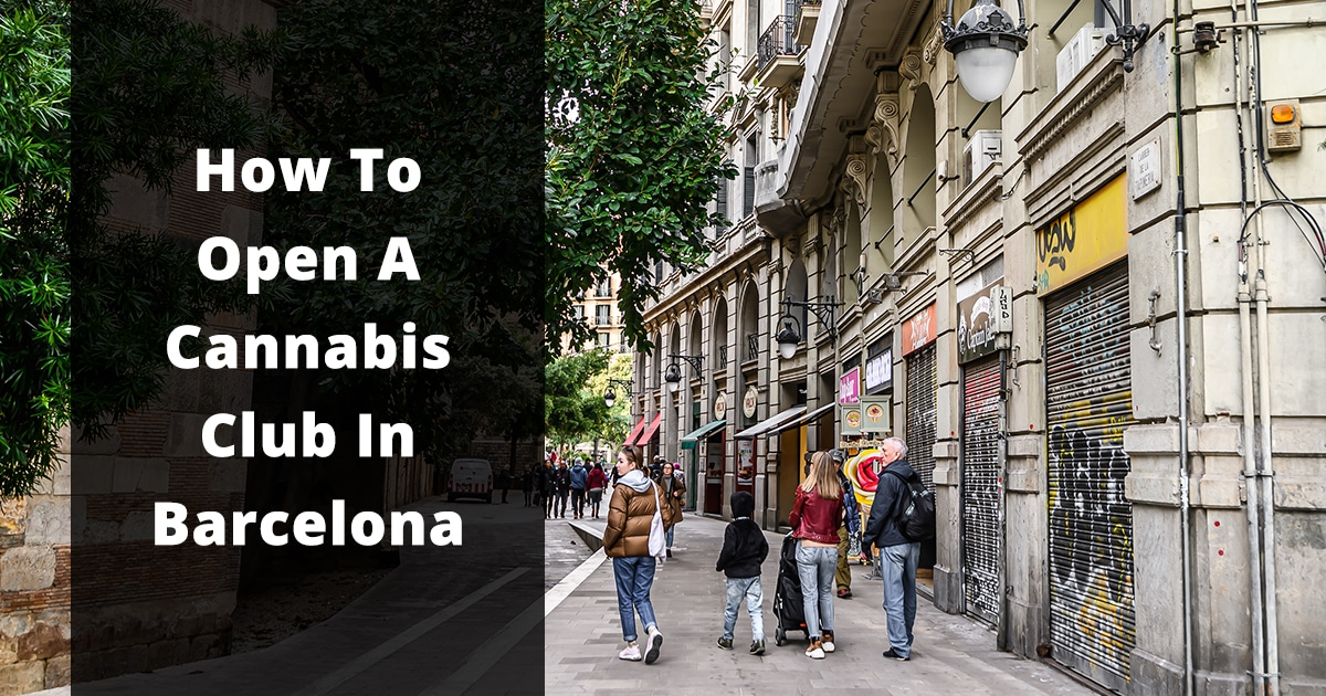 how to open a cannabis club in barcelona