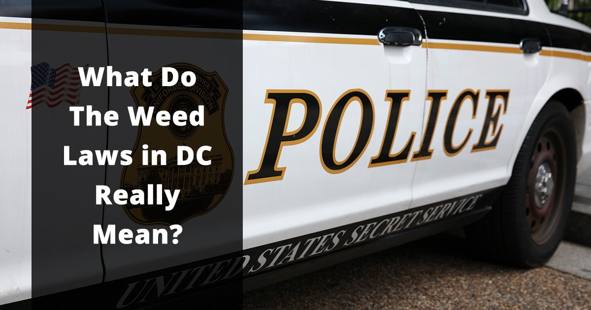 what do the weed laws in dc really mean