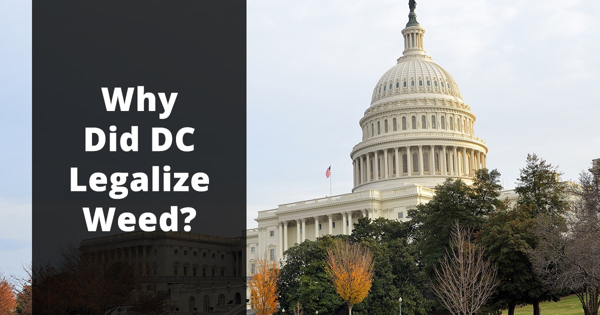 why did dc legalize weed