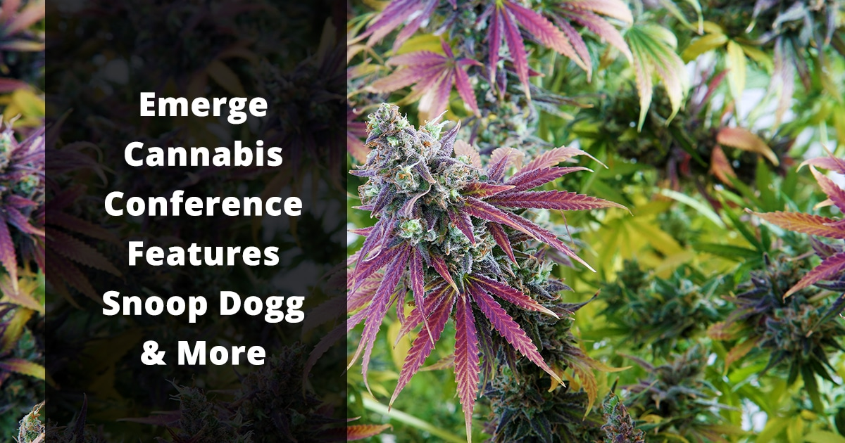 emerge cannabis conference features snoop dogg and more