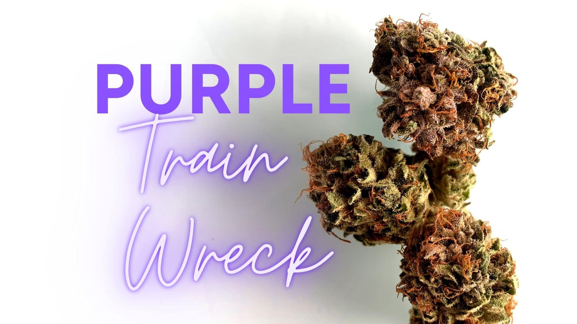 purple train wreck