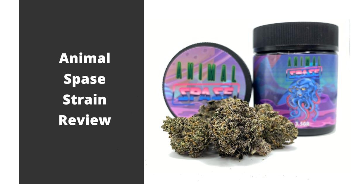 animal spase strain review