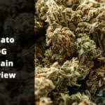 Gelato OG Strain Review
