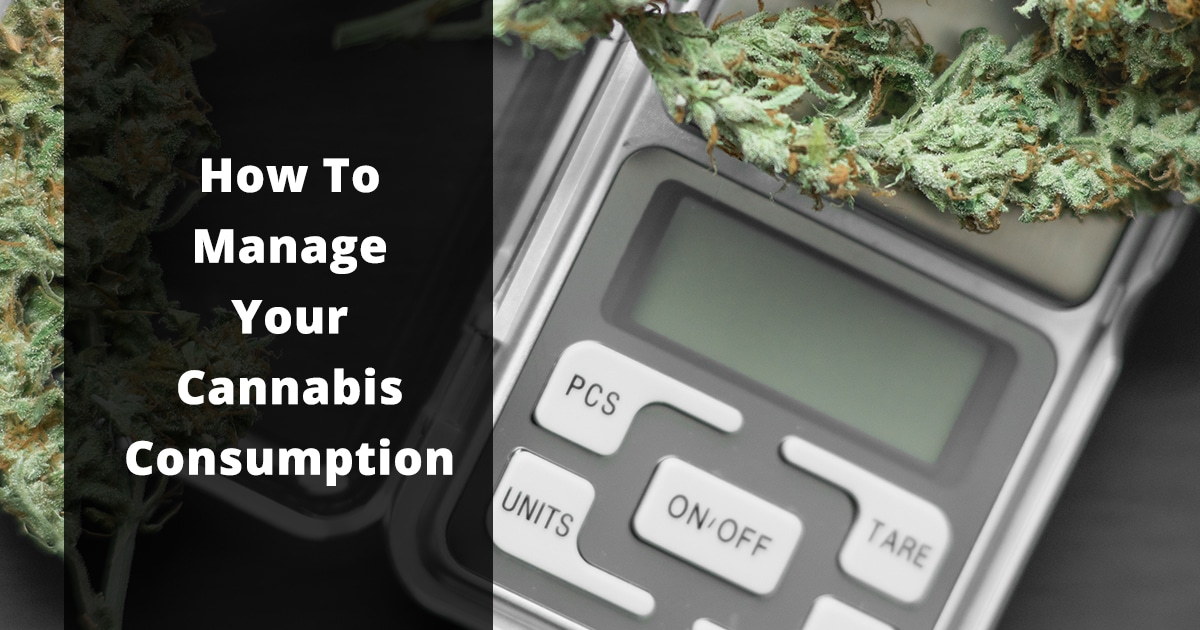 how to manage your cannabis consumption