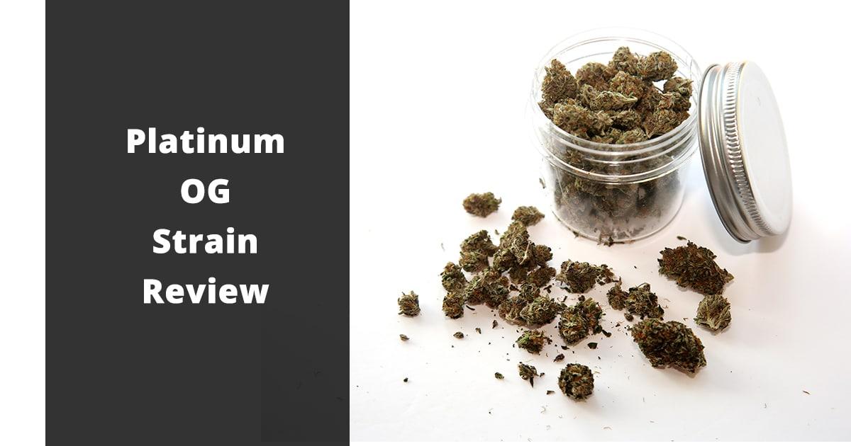 platinum og strain review