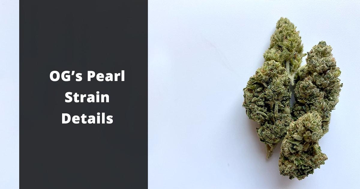 ogs pearl strain details